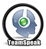 dont wait active now your teamspeak server